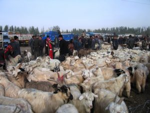 Kashgar market China Silk Road tour