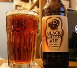 Great-Britain-Tour-Pub-Crawl-England-Ireland-Wales-Edinburgh-London-Black-Sheep-Ale-2