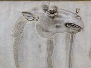 Iran-Tour-Persepolis-Pasargad-Bistoun-Isfahan-Shiraz-Shush-Isfahan-Hamadan-Persepolis-Relief