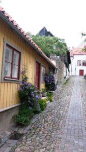 Visby Gotland Visby Gotland Viking tour archaeology tour Denmark tour Sweden tour