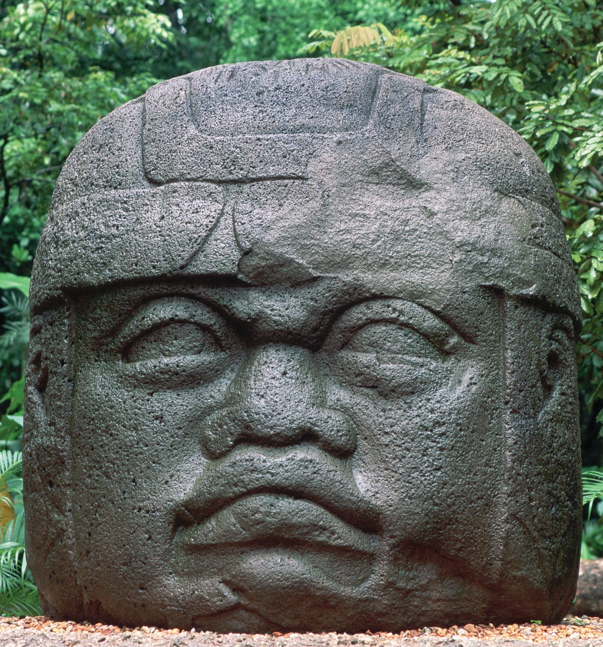Mexico tour in the path of the olmecs far horizons la venta archaeological park olmec publicscrutiny Image collections