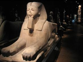 Sphinx - Egyptian Museum Turin