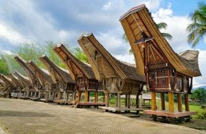 Sulawesi Tana Taraja rice barns Indonesia tour