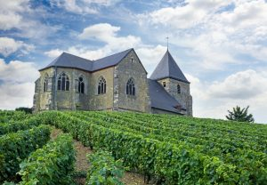 epernay vineyards Cathedrals tour France tour