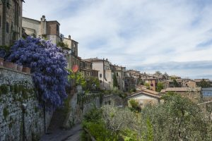Montalcino Far Horizons Tour