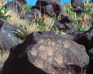 American Indian tour archaeology tour petroglyphs